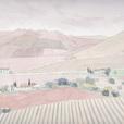 オリーブ畑(スペイン)06.01.25掲載